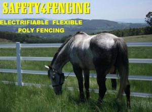 Horse_Safety_Fence