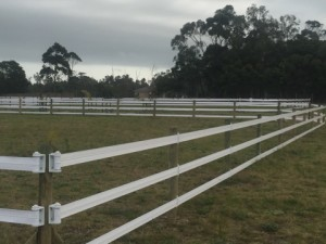 Safety4Fencing electrifiable permanent paddock fencing (lasts 10+ years)