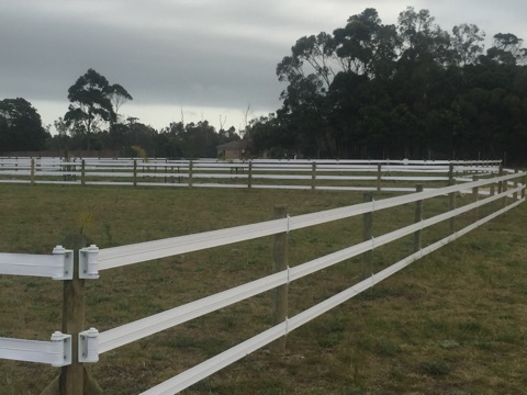 Safety4Horses electrifiable permanent paddock fencing (lasts 10+ years)